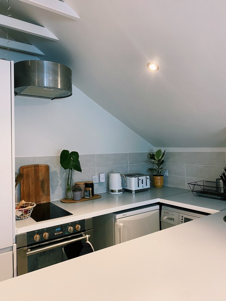 What I Rent: Rosie, Southsea - the kitchen, with two plants, a toaster, and a kettle