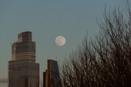 LONDON, UNITED KINGDOM - FEBRUARY 26, 2021: The full 'Snow moon', also known as the ?Hunger moon?, rises above the skyscrapers of the City of London on February 26, 2021 in London, England. (Photo by WIktor Szymanowicz/NurPhoto)
