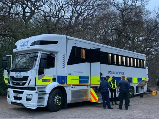 Officers and a police horse vehicle this evening searching Epping Forest in Loughton.