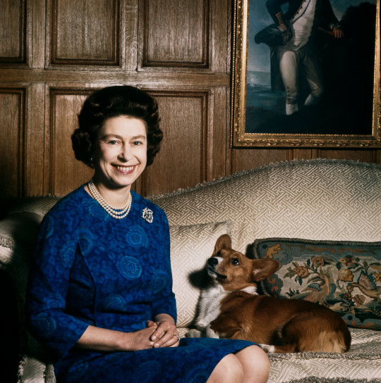 Queen Elizabeth II with one of her corgis at Sandringham, 1970. (Photo by Fox Photos/Hulton Archive/Getty Images)