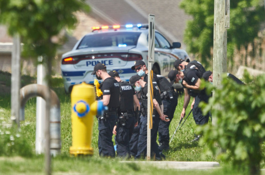A line of police officers look for evidence at the scene of the crash in London, Ontario