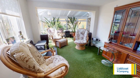 Astroturf inside house - conservatory