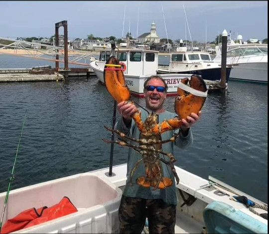 Michael Packard was going on a routine lobster dive off Cape Cod last Friday morning when he said he 'felt a huge bump and everything went dark'
