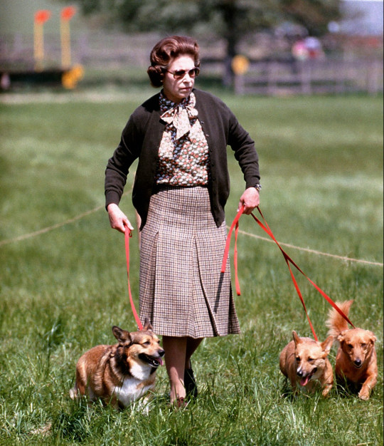 Queen Elizabeth II with some of her corgis walking the Cross Country course during the second day of the Windsor Horse Trials.