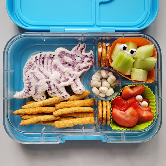 A dinosaur lurking in s packed lunch