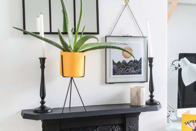 What I Rent, Hannah, £875 for a two-bedroom house in York: plant and prints over fireplace in home office